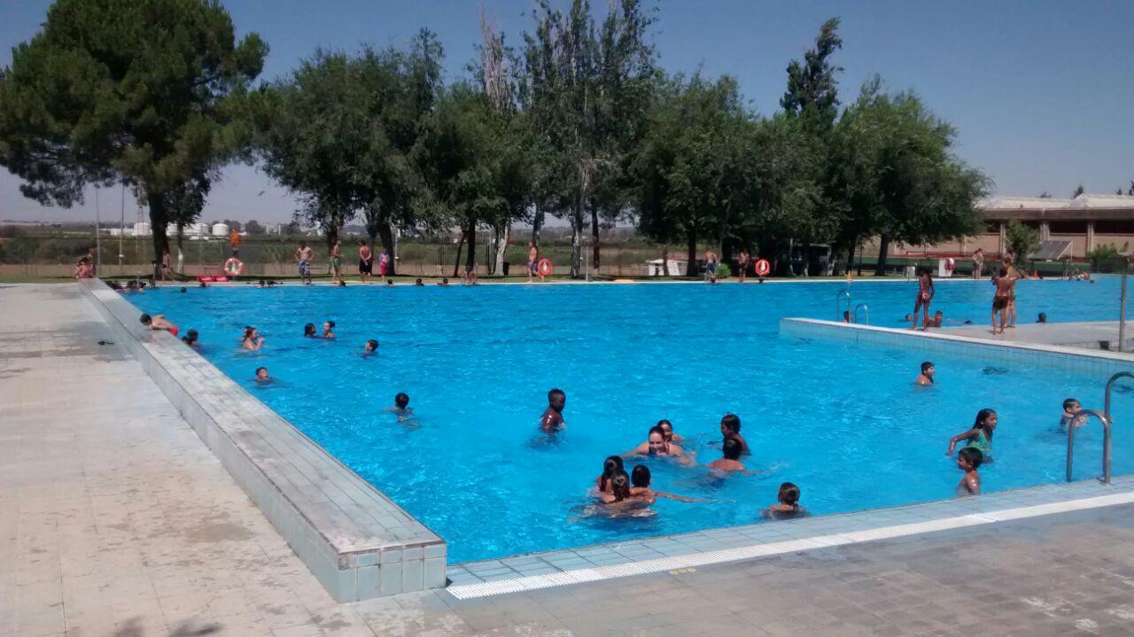Coordinaci n t cnica y monitorizaci n en las piscinas de for Piscinas abiertas en sevilla